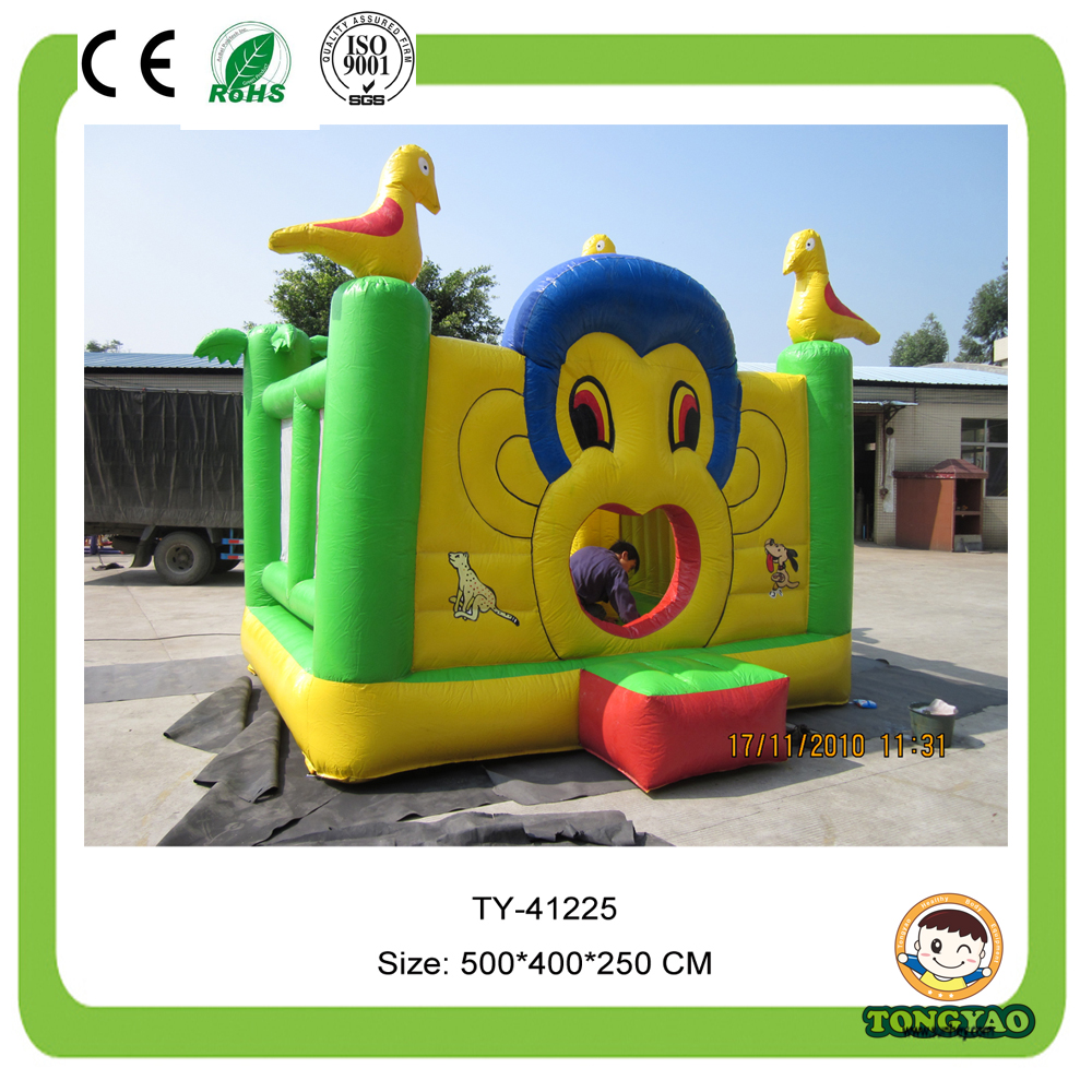 giant Castle Inflatable Bouncy Outdoor
