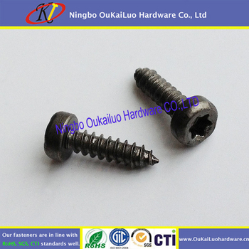 Black Galvanized Cheese Head Torx Self Tapping Screws