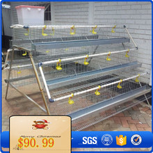 Alibaba China Chicken egg poultry farm for breeding laying hens for sale for poultry equipment for small farm