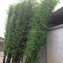 Guangzhou Shuyi fake artificial bamboo tree for garden decoration