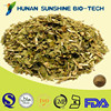 100% Natural Yerba Mate Extract 20% Tannin Acid for Weight Control