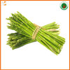Best Prices Fresh Green Asparagus Vegetables