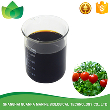 Pure biological agents safety mango biotechnology fertilizer