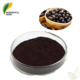 Frozen dried juice extract fruit powder organic acai berry wholesale
