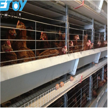 Poultry Layers Battery Cage System For Closed Poultry House