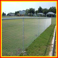 Best price PVC coated diamond /American/European wire mesh fence / garden fence factory
