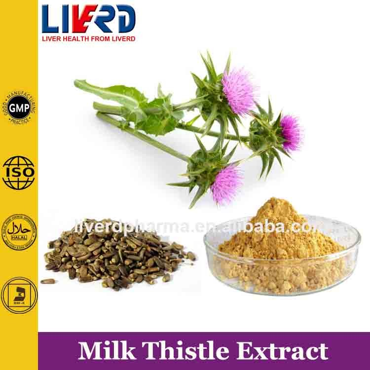Chinese Herb Medicine Plant HPLC50% Silymarin Milk Thistle Extract