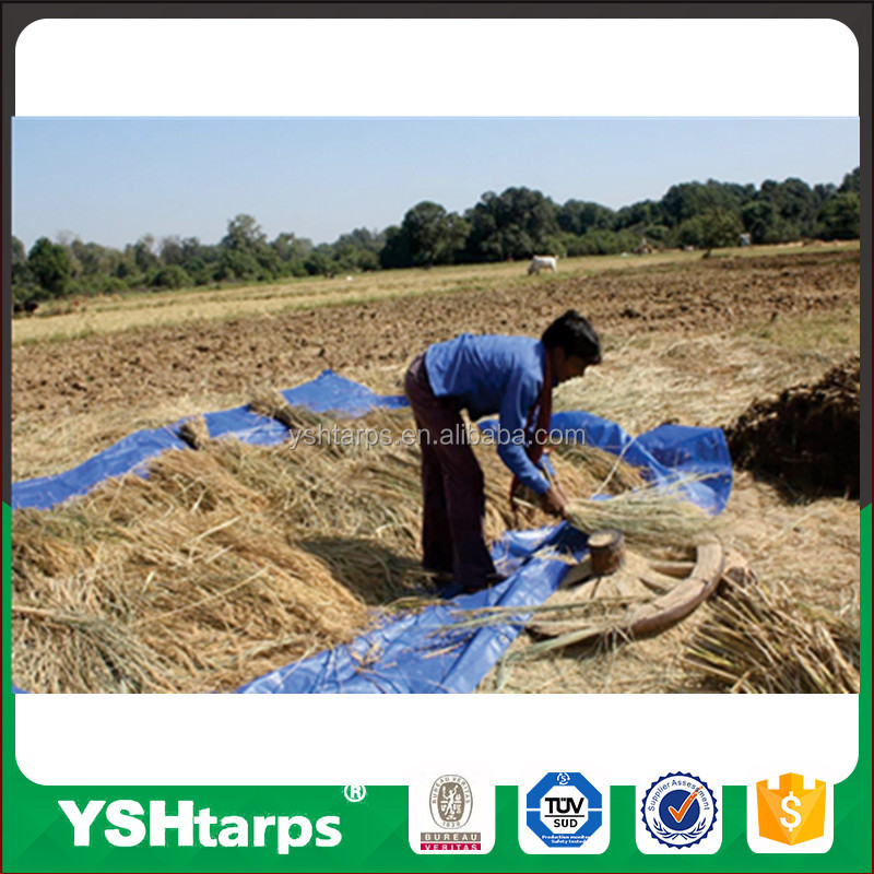 HDPE Plastic Tarpaulin Cover Sheet for Agriculture Greenhouse