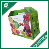 ALIBABA GOLD SUPPLIER FRUIT PACK BOX PACKAGING PAPER BOX WHOLESALE