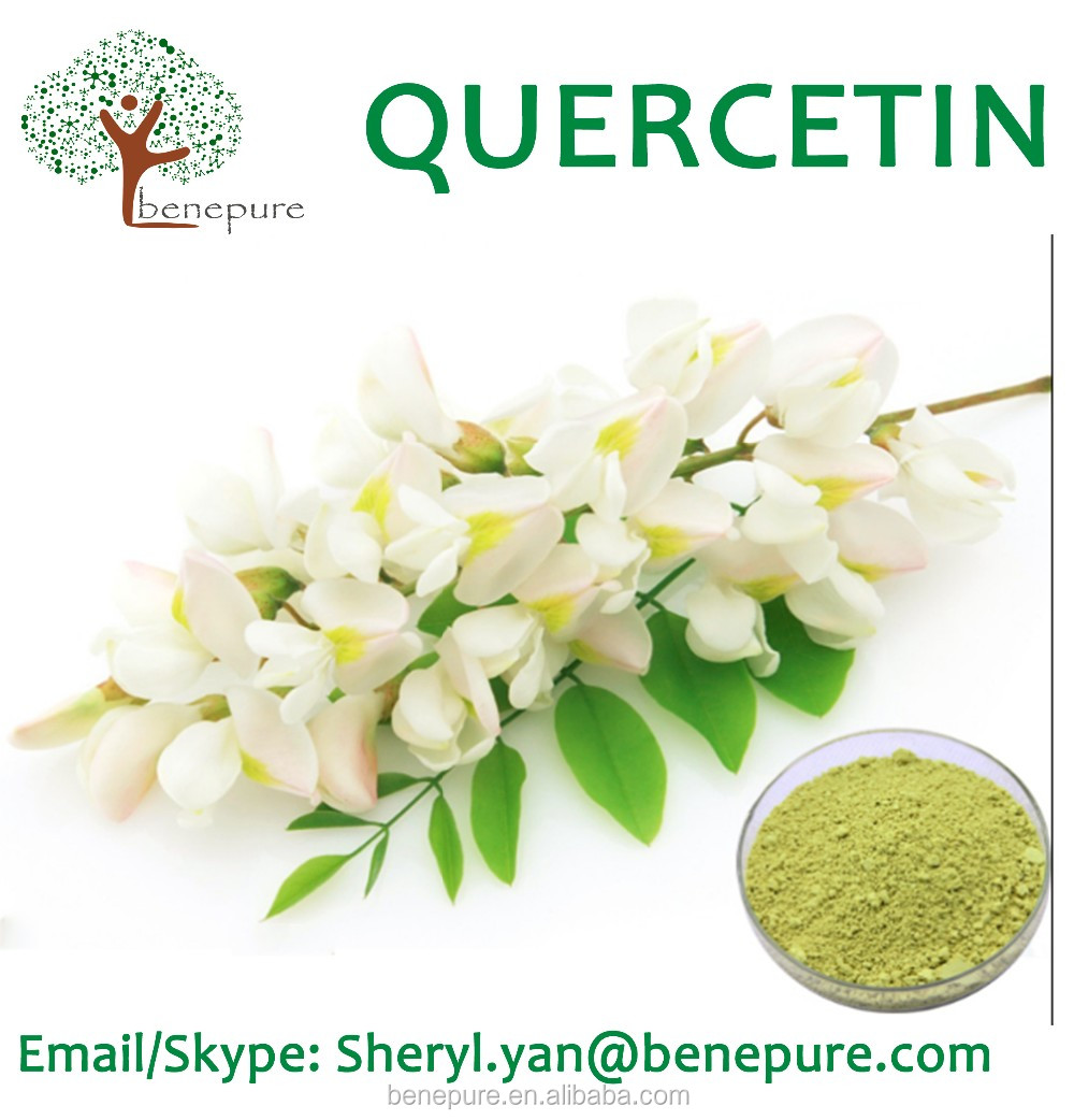 Quercetin dihydrate anhydrous from sophora japonica L CAS 6151-25-3 for food supplement