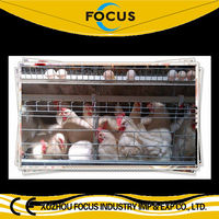 farming house hot galvanized A or H type cages for poultry breeding hens layer broiler feeding equipment farming with automatic