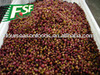 2017 high wholesale iqf frozen cranberry for sale