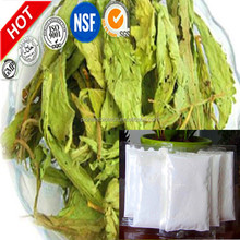 Hot selling extraction stevia plant stevia leaves extract stevioside