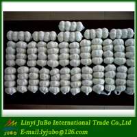 Chinese good quality garlic from jinxiang