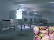tunnel flower tea drying and sterilization machine