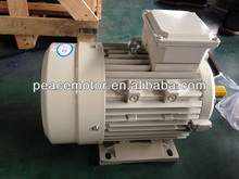 Y2 series three phase electric ban motor