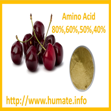 soybean extract 80% amino acids