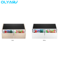 Olyair Smart Coffee Table Has a Speaker System and a Refrigerator