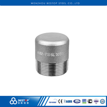 Stainless Steel Pipe Fittings 304L 316L Forged Male Threaded Round Head Plug
