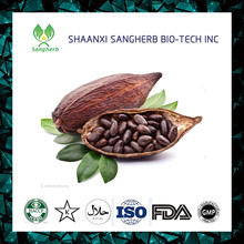 high quality Cocoa beans plant seeds powder in bulk