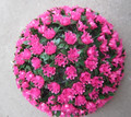 30CM Pink Artificial Rose Ball Decoratice flower ball Plastic Rose Ball