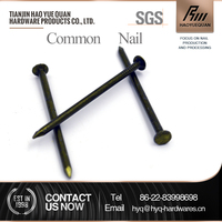 best selling polished/galvanized iron common nails