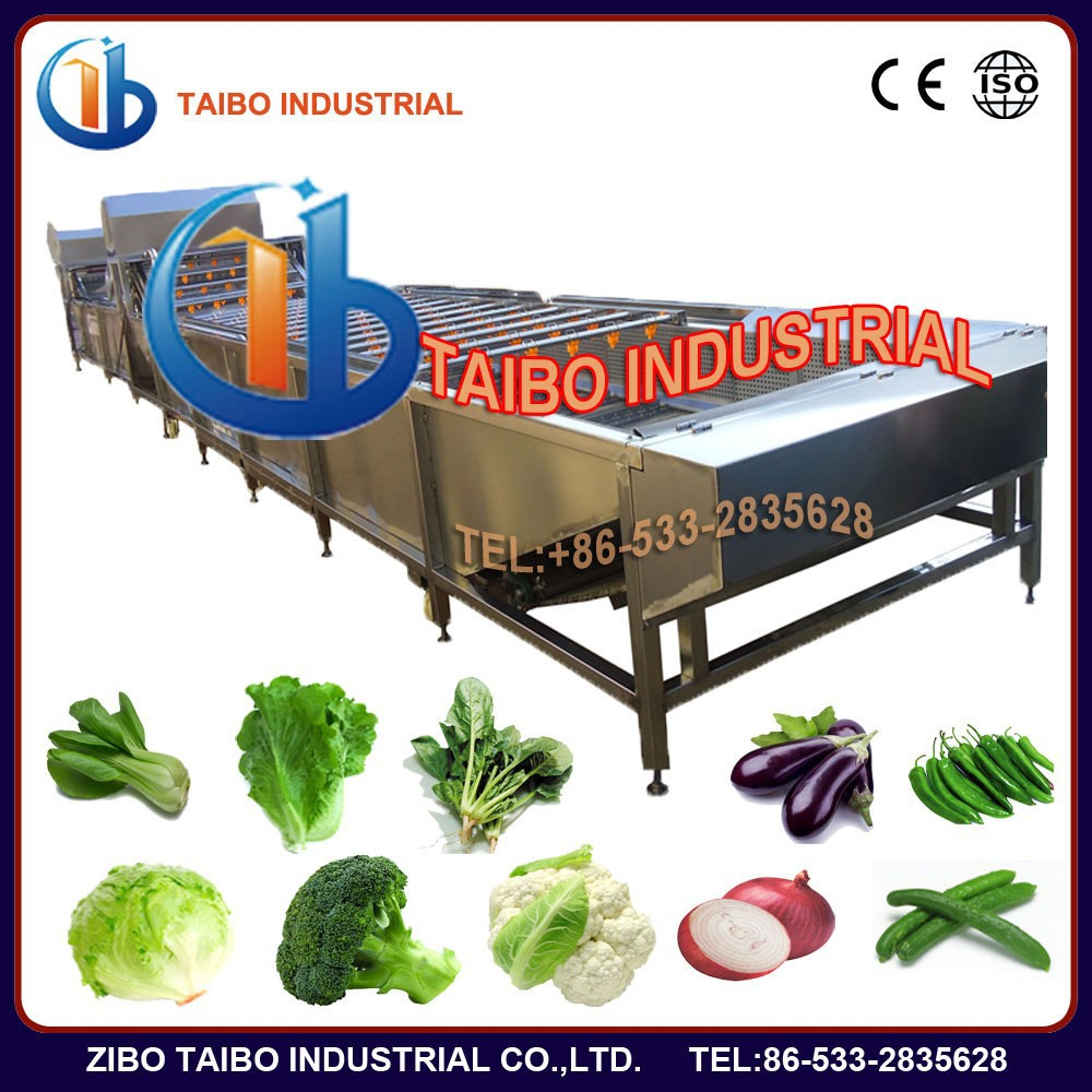 greens and fruit washing machine line like leafy vegetable, dates, citrus