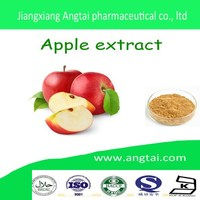 GMP China GMP factory supply best popular high quality 100%Apple Cider Vinegar powder extract