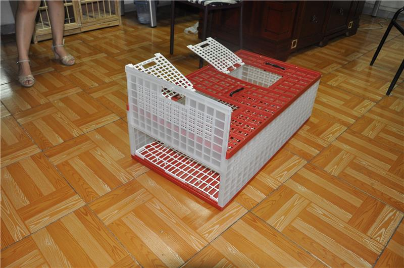 pigeon cage with modern design cheap make wooden bird cage plastic folding pigeon cage