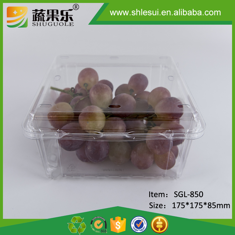 Food grade material clear clamshell plastic fruit and vegetable packaging container 1kg