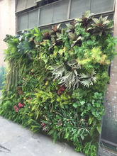 door Green Wall,Foliage Wall Decoration,Fern Wall Decore PlaArtificial Plants Outstic Plant
