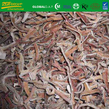 fresh raw material black fungus healthy and delicious mushroom wholesale