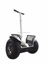 Self Balancing Electric Chariot 19 Inch Off-Road Scooter Two Big Tire Citycoco Car Hoverboard