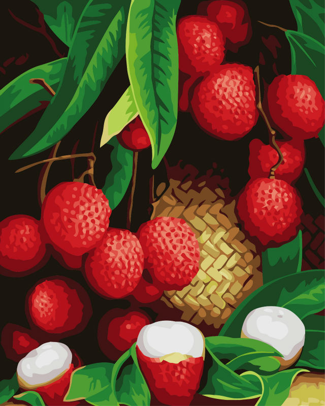 diy digital oil painting - yiwu factory fruit picture oil painting-G246