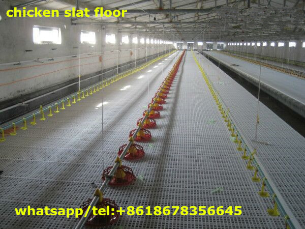 Broiler chicken farms Poultry equipments chicken slat floor for sale
