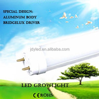 Scientific 2 feet 120degrees no shadow coca seed for green house growing led u tube