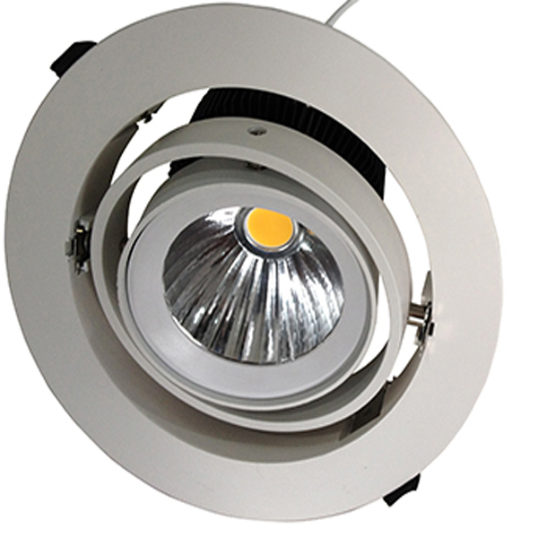 20w 30w high efficient Led Down light form rise lighting