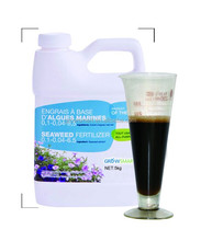 Dried Kelp Produced Seaweed Base Fertilizer