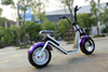 Harley electric scooter off road 2 wheel electric scooter for sale