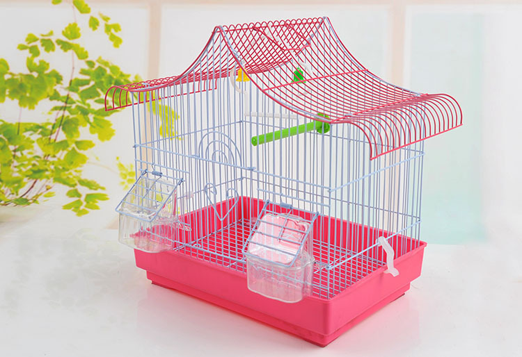 China suppliers indoor decorative large metal bird cage