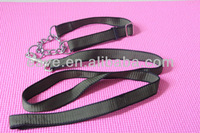 Q060 provide green pet dog training collar and leash for big dog