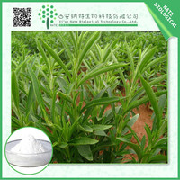 100% Nature and competitive prices Stevia Leaf Extract stevioside 45%