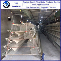 cage for breeding birds/A type Type and Chicken Use poultry farm equipment