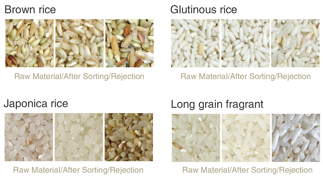 1. Brown rice.jpg