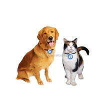 wholesale digital pet camera for your lovely pets