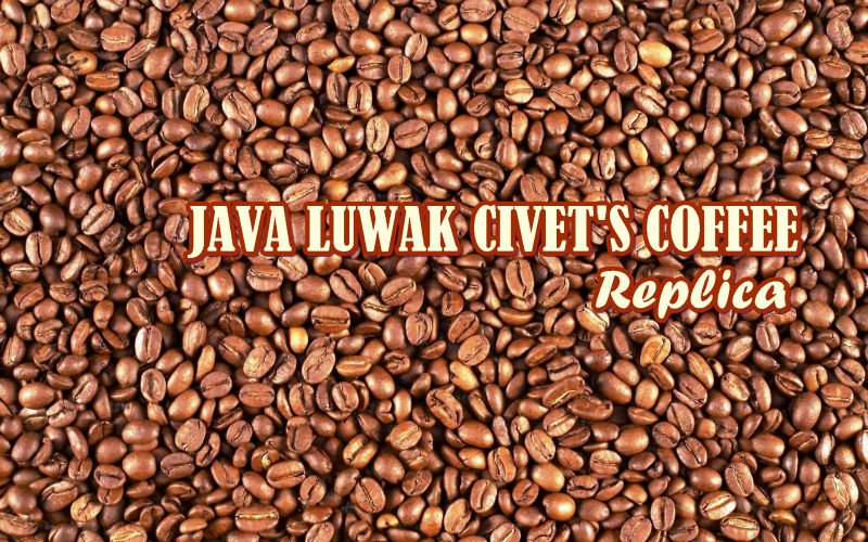 *Chivet Luwak Coffee Replica USD 60/kg CNF Airfreight Asia-South Europe