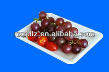 Fancy 100% Tree-free Biodegradable Bagasse Paper Small Fruit Tray