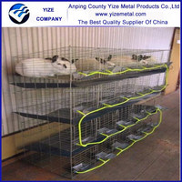 High Quality rabbit cage with tray/rabbit cage in kenya farm