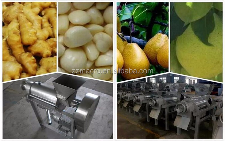 Industrial Fruit Juice Press Machine | Spinach Cold Press Juicer