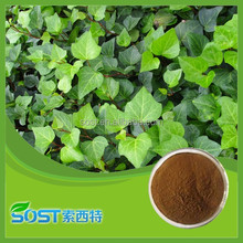 Natural Hedera Helix Extract / Ivy saponins extract / Hederagenin / Hederacoside C